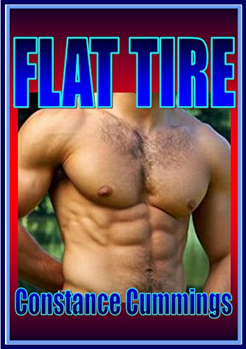 Flat Tire: Contemporary Adult Romance, Cougar Erotica (English Edition) (Flats Cougar)