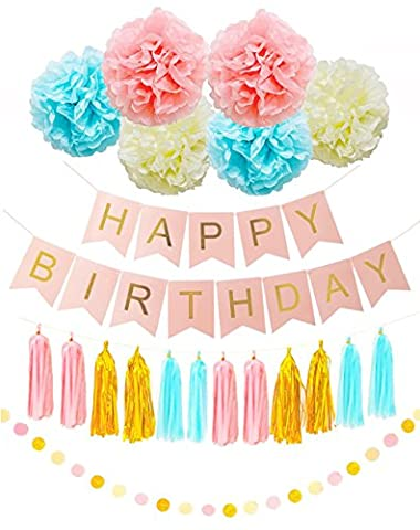 Happy Birthday Bunting Banner Party Supplies Set of Pink Blue Ivory White Tissue Paper Pom Poms Garlands Tissue Tassels Birthday Party Baby Shower Wedding Decoration Multicolor by