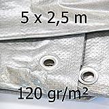 Abdeckplane rechteckig 120gr/m² 5 x 2,5 m 57234-1