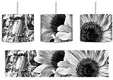 Monocrome, Sonnenblumen auf altem Holztisch inkl. Lampenfassung E27, Lampe mit Motivdruck, tolle Deckenlampe, Hängelampe, Pendelleuchte - Durchmesser 30cm - Dekoration mit Licht ideal für Wohnzimmer, Kinderzimmer, Schlafzimmer