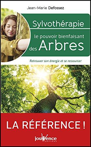 Sylvothrapie : le pouvoir bienfaisant des arbres