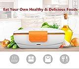 Boîte à Lunch de Chauffage Électrique - Récipient de Réchauffement de Repas de Bento avec le Plateau D'alimentation en Acier Inoxydable par Home Care Wholesale