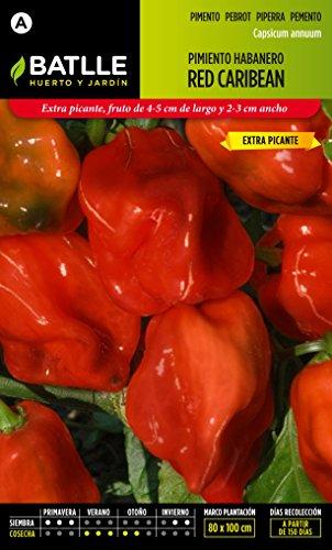 semillas-batlle-pimiento-habanero-red-caribbean
