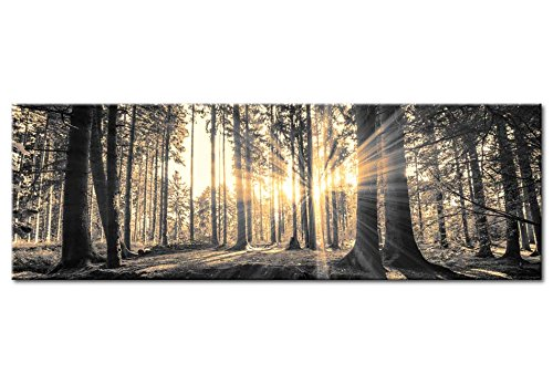 Neuheit! Modernes Acrylglasbild 135x45 cm - 1 Teile - 2 Formate zur Auswahl – Glasbilder – TOP - Wand Bild - Kunstdruck - Wandbild – Bilder - Wald Baum Natur Landschaft c-B-0077-k-c 135x45 cm - 6