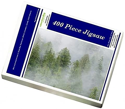 Photo Jigsaw Puzzle of Mist covered pine trees in Great