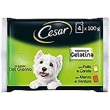 Cesar Le Delizie del Giorno Cibo per Cane Selezione in Gelatina 4 x 100 g - 13 Confezioni (52 Bustine in totale)