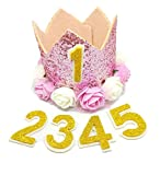 BIPY Pink Krone Hund Geburtstag Hat, für Mädchen Kleine Medium Große Hunde Katzen Schweine Sheeps Kaninchen mit 0–9