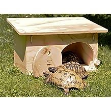 Tartarughe di terra for Piscina per tartarughe