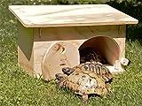Nouveauté Blitzen, maison-refuge pour tortues terrestres avec le fond