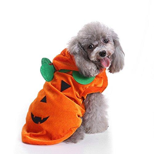 loween Kürbis Licht Kostüm, Halloween Hund Cosplay Kleidung, niedlichen Kürbis Kopf Hund Kleidungsstück, Hund warme Kleidung (S) ()