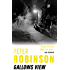 Gallows View (Inspector Banks Book 1)