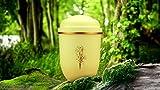 """Biologisch abbaubar Verbrennung Asche Urne–Erwachsene Größe, elfenbeinfarben cremefarben """"Die goldene Baum"""""""