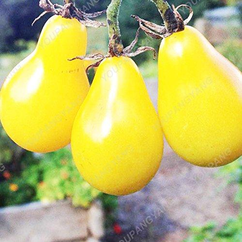 100 graines / paquet Graines rares Noir tomate très savoureux Nutritive bruyères Légumes Graines Bonsai pour jardin plantation facile jaunie