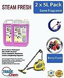 2x 5L Dampf Reinigungsmittel Lösung für alle Maschinen–Dampfreiniger Fluid INC Vax–Berry Fresh