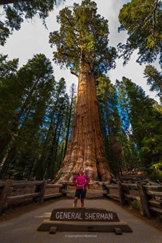Hiker Admiring General Sherman Giant Sequoia Tree Journal: 150 Page Lined Notebook/Diary