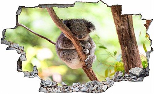Eukalyptus-bar (DesFoli Koala Eukalyptus Bär Wildnis 3D Look Wandtattoo 70 x 115 cm Wanddurchbruch Wandbild Sticker Aufkleber C158)