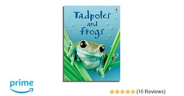 Tadpoles and Frogs Usborne Beginners Beginners Series: Amazon co uk