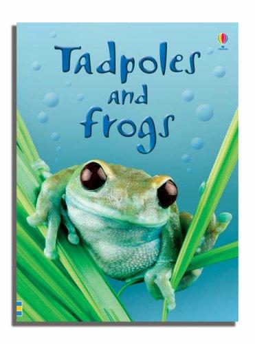 Tadpoles and Frogs (Usborne Beginners) (Beginners Series)