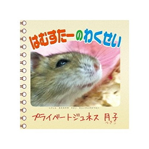 Teddy Bear song (Teddy Bear Hamster)