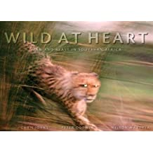 Wild at Heart: Man and Beast in Southern Africa: Mam and Beast in Southern Africa