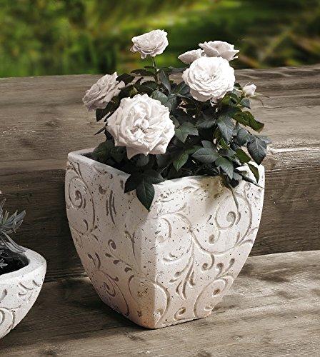 39 vaso a forma di vaso di fiori viticci rettangolare for Vaso rettangolare