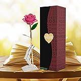 Rosa 24 K chapado en oro rosa flor con soporte transparente con caja de regalo mejor regalo para el día de San Valentín, el día de madre, aniversario, regalo de cumpleaños (Flor rosado con soporte)