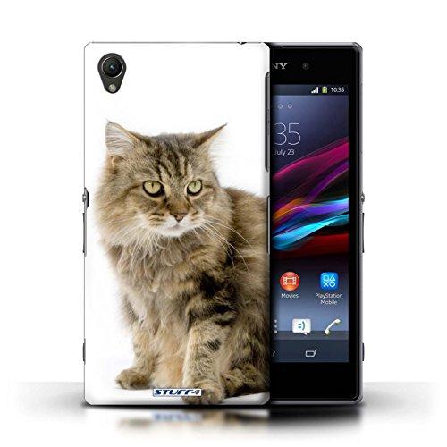 Kobalt® Imprimé Etui / Coque pour Sony Xperia Z1 / Gueux conception / Série Espèces de chats Gueux