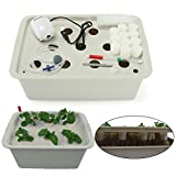 Indoor Hydroponics Grower Kit, Pathonor 11 Pod 3.5 gal Non-transparent DIY Educational DWC Self Watering Hydroponics Tools Plant Cloner Kit Include Aquarium Air Pump, Buoy, Planting Baskets etc