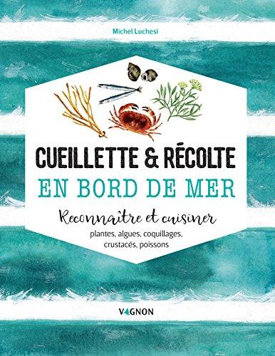Cueillette & récolte en bord de mer (Loisirs) par Michel Luchesi