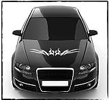 DD Dotzler Design - 2405_20 - Aufkleber für Motorhaube oder Heckscheibe - Abmessung ca 80 x 12 cm - Autodekor Autoaufkleber Car Tattoo Aufkleber Auto Car Tribal