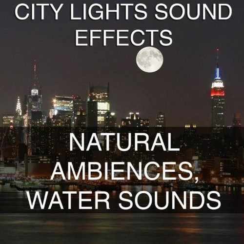 Beach Waves Ambience Sound Effects Sound Effect Sounds EFX Sfx FX Nature and Weather Nature Miscellaneous [Clean]