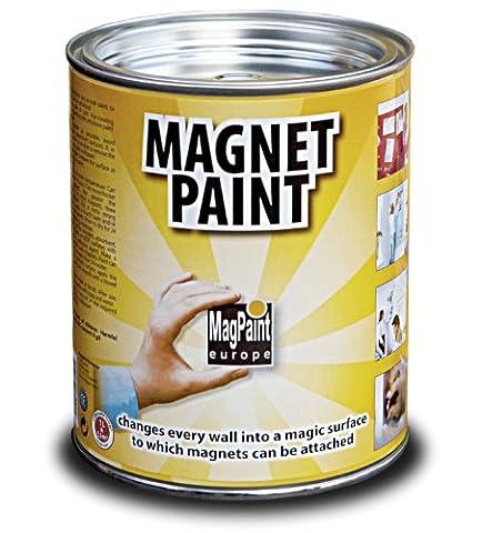 MagPaint 1.0L Magnet Paint -