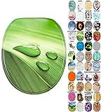 Abattant WC - Grande sélection - Finition de Haute qualité - Charnières Robustes - Fixation Facile (Feuille Verte)