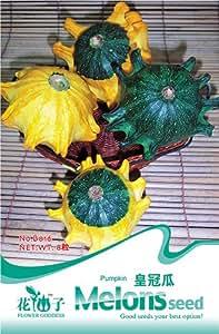 5pack jeder Packung 8+ Samen Kronenartigen Kürbis Gemüse Grün B016