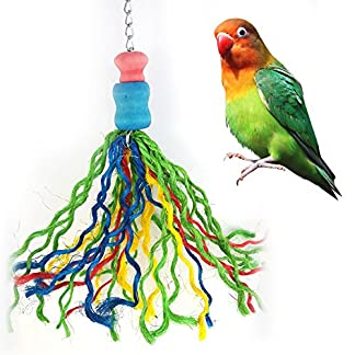 Colorful Thread Birds Chew Bite Toy for Bird Parrot African Greys Budgie Cockatoo Parakeet Cockatiels Conure Macaw Lovebird Canaries Cage Hanging Decor Pet Accessories Colorful Thread Birds Chew Bite Toy for Bird Parrot African Greys Budgie Cockatoo Parakeet Cockatiels Conure Macaw Lovebird Canaries Cage Hanging Decor Pet Accessories 51VYf9YxOlL