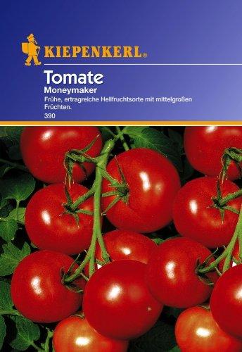 Tomate 'Moneymaker' - Ertragreiche Hellfruchtsorte