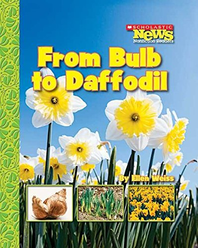 [(From Bulb to Daffodil)] [By (author) Assistant Professor School of Architecture Ellen Weiss] published on (September, 2007)