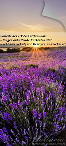 nde Türtapete mit Schutzlaminat, Motiv: Sonnenuntergang über dem Lavendel - Größe: 93 x 205 cm in Premium-Qualität: Abwischbar, brillante Farben, rückstandsfrei zu entfernen (über Den Hügel Dekorationen)