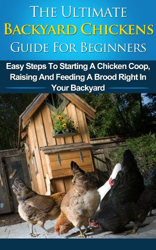 Backyard Chickens Guide For Beginners: Easy Steps To Starting A Chicken Coop, Raising And Feeding A Brood Right In Your Backyard (Choosing Coops, Chicken ... Raising Chickens, Chicks, Chicken Coops)