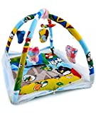 #6: Feathers-Nature's Touch Cotton Mosquito net cum play gym(0-8 Months)