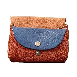 LE GUSTAVE cartera de cuero, monedero estilo vintage Bicolor Marrón/Azul PAUL MARIUS