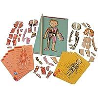 Janod - Bodymagnet, juego de anatomía magnético (J05491)