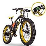 RICH BIT RT-012 E-Bike Elektrisches Fahrrad 26 Zoll 4.0 Fat Reifen Snow Bike...
