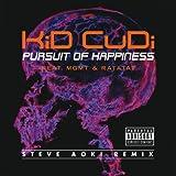 Pursuit Of Happiness (Extended Steve Aoki Remix (Explicit)) [feat. Ratatat] [Explicit]