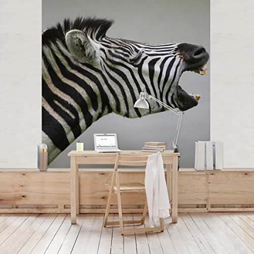 fotomurale-rawling-zebra-carta-da-parati-quadrato-fotomurali-fotomurale-tappezzeria-stoffa-da-parati