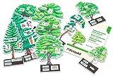 Betzold 754793 - Biologie Lehrmittel Bäume bestimmen leicht gemacht - Kinder Schule Baum-Modell Wald Natur -