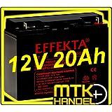 Effekta AGM Akku Batterie Typ BT 12-20 12V 20Ah Flachpol M5