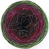 Donegal Tweed Farbverlauf Fb. 876, Menge:100g - 96m