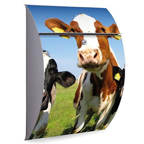 Burg Wächter Briefkasten Edelstahl | Modell Riviera 46cm x 33,5cm x 13cm groß | Postkasten mit Öffnungsstopp, großer A4 Einwurf, Zylinderschloss, 2 Schlüssel | Motiv Kühe