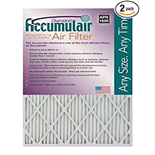 Accumulair FD10X20_2 2 Disposable Air Filter, 10